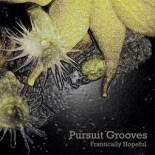 Pursuit Grooves - Frantically Hopeful
